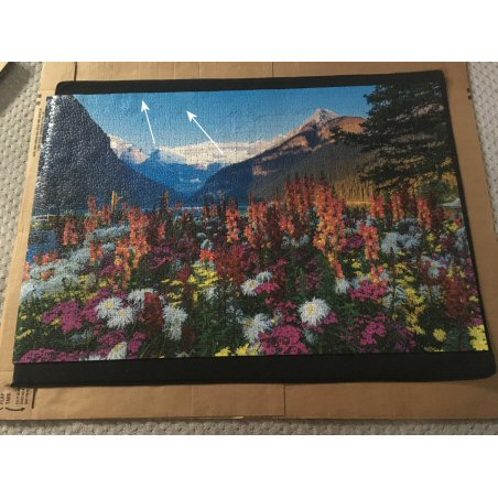 Repaired Jigsaw Puzzle